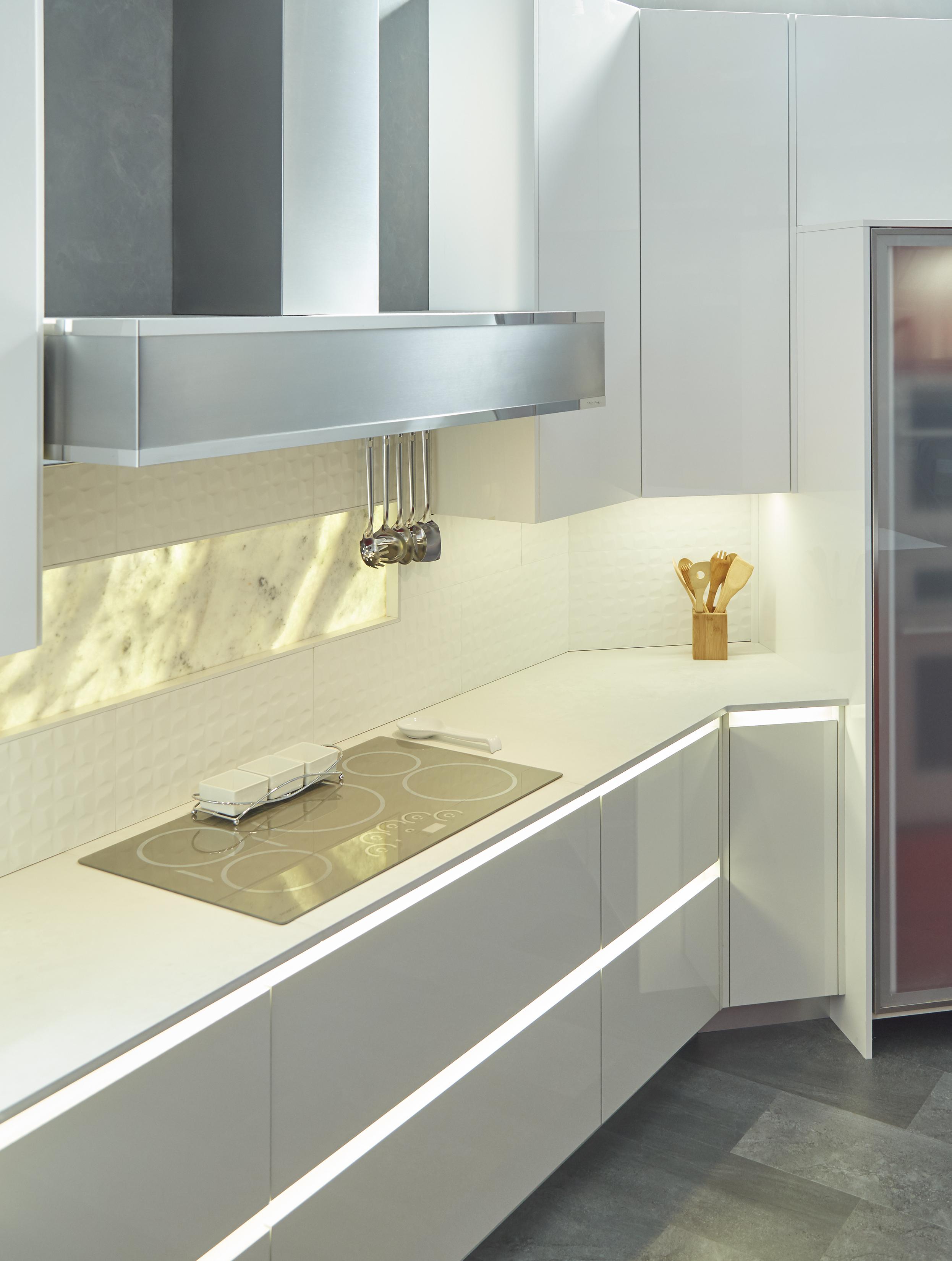 Wellborn Cabinet Minimalist Modern European Kitchen With
